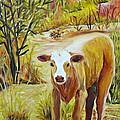 Desert Calf by Mark Malone