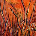 Desert Flower by Nada Meeks