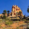 Desert Landscape Le by Greg Norrell