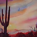 Desert Sunset by Victoria Wills
