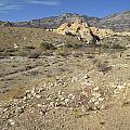Desert Washout by Frank Wilson