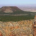 Desert Watch Tower View by Julie Niemela