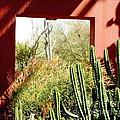 Desert Window by Marilyn Smith