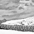 Desolation by Marilyn Hunt