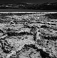 Desolation by Mike  Dawson