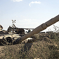 Destroyed Iraqi Tanks Near Camp Slayer by Terry Moore