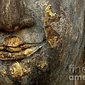 Detail Buddhas Lips by Bob Christopher