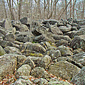 Devil's Potato Patch - Montgomery County - Pennsylvania by Mother Nature
