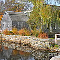 Dexter's Grist Mill by Catherine Reusch Daley