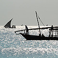 Dhows by Alan Clifford