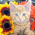 Di Milo - Sun Flower Kitten With Blue Eyes - Kitty Cat In Fall Autumn Colors With Gerbera Flowers by Chantal PhotoPix