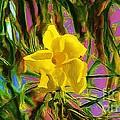 Digital Painting Of Yellow Orchid by John  Kolenberg