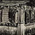 Dilapidated House by David Patterson