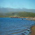 Dillon Beach Pier by Joe Fernandez