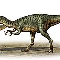 Dilophosaurus Wetherilli, A Prehistoric by Sergey Krasovskiy