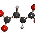 Dimethyl Fumarate Allergen Molecule by Dr Mark J. Winter