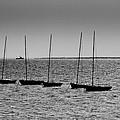 Dinghies Moored Off Of Leigh On Sea Essex by David Pyatt