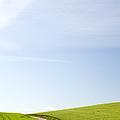 Dirt Road Through Wheat Field, Palouse, Washington by Paul Edmondson