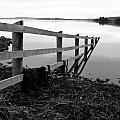 Disappearing Fence. by Martine Maclennan