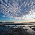 Discovery Park Beach Sunset by Mike Reid