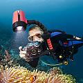 Diver And Anenome Fish by Dave Fleetham
