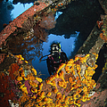 Diver Explores The Liberty Wreck, Bali by Todd Winner