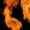 Divine Fire by Michelle Visconti