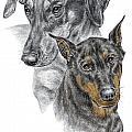 Dober-friends - Doberman Pinscher Portrait Color Tinted by Kelli Swan