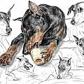Dober-thoughts - Doberman Pinscher Montage Print Color Tinted by Kelli Swan