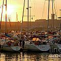 Docked Yachts by Carlos Caetano