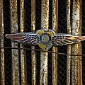 Dodge Brother Emblem by Penny  Ryan