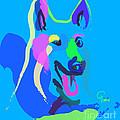 Dog - Colour Dog by Go Van Kampen