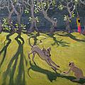 Dog And Monkey by Andrew Macara