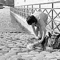 Dogday in Paris