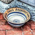 Doggie Dish by Debbi Granruth