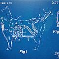 Doggie Vacuum Patent Artwork by Nikki Marie Smith