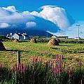 Dooega, Achill Island, County Mayo by The Irish Image Collection