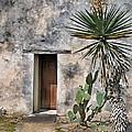 Door In Spanish Mission Building by Jill Battaglia
