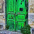 Doors by Shauna Milton