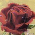 Doris's Rose by Donna Tuten