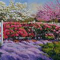 Dotti's Garden Spring by Keith Burgess