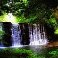 Dove Lake Falls by Bill Cannon