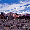 Downtown  Bodie by Stephen Whalen