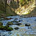 Downstream 2 by Linda Hutchins