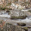 Downstream From Cascade Falls by James Woody