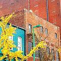 Downtown by Lizi Beard-Ward