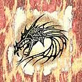 Dragon Fire by Vicki Podesta