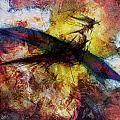 Dragon by Stefano Popovski