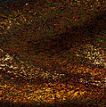 Dragon's Tale Macro1 by Christopher Gaston