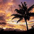 Dramatic Fiji Sunrise by Greg Vaughn - Printscapes